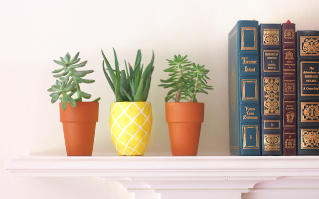 ravishing house plants care. housebeautiful Best And Easy To Plant Houseplants That Improve Indoor Air Quality