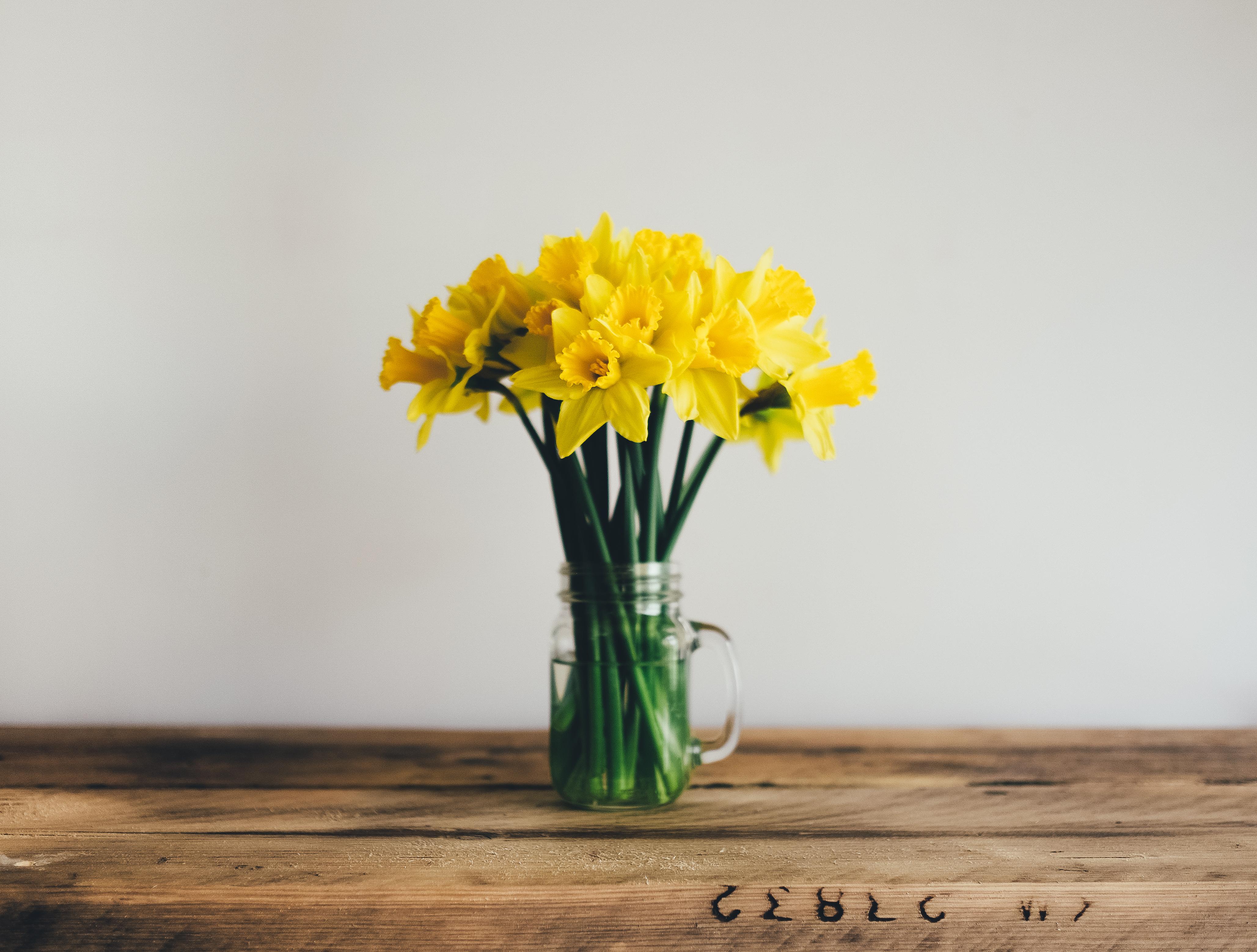 The secret to making your cut flowers last longer webtokri reviewsmspy
